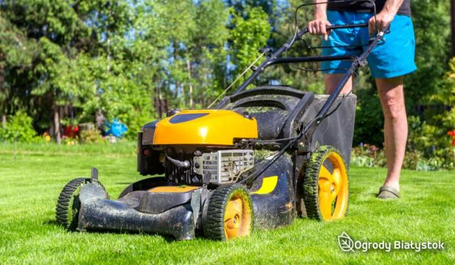 Pielęgnowanie ogrodów Białystok